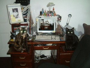 Merle and Siouxsie guard my work-space. Note the deadly radioactive eyes!
